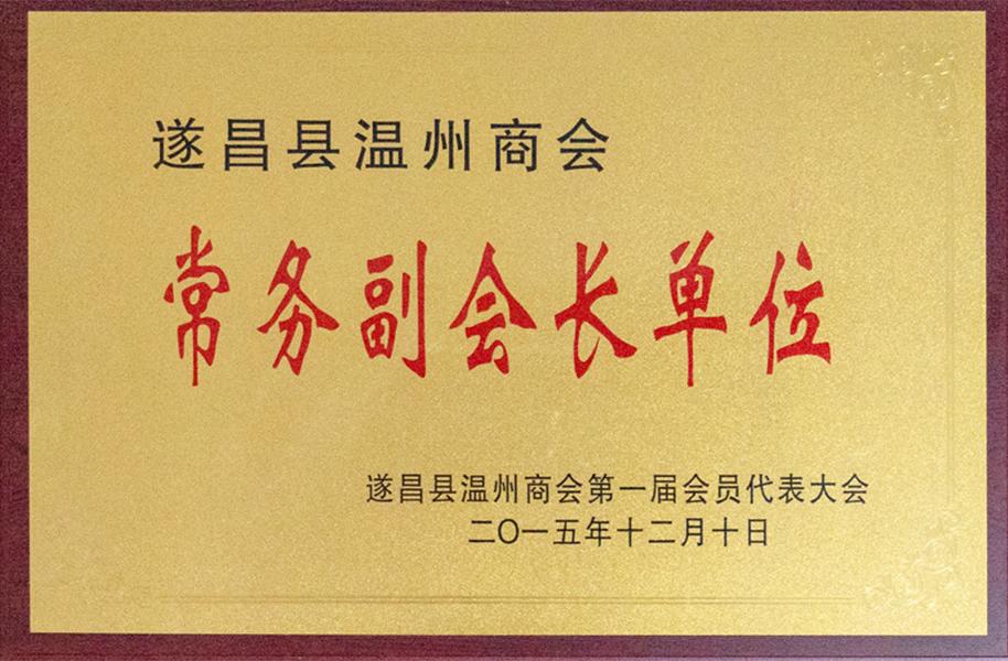 遂昌温州商会常务副会长单位